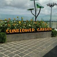 Das Foto wurde bei Sunflower Garden von Jimmy T. am 3/3/2013 aufgenommen