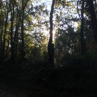 Photo taken at El Camino de Santiago - Ribadiso by Charles O. on 10/14/2015