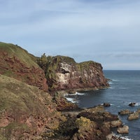 Photo taken at St Abb's Head by Ricarda Christina H. on 3/28/2016