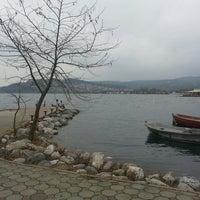 3/3/2013 tarihinde Doğanziyaretçi tarafından Gülizar Bahçe'de çekilen fotoğraf
