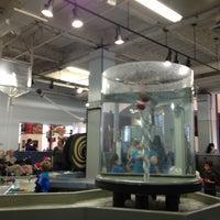 Foto diambil di Children's Discovery Museum of San Jose oleh Tal K. pada 1/5/2013