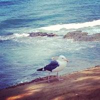 Das Foto wurde bei La Jolla Beach von Kate K. am 7/17/2013 aufgenommen