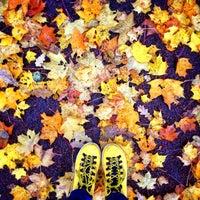 Foto scattata a Summer Garden da anastacia il 10/9/2013