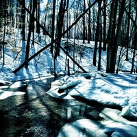 Photo taken at Blandford Nature Center by Justin W. on 3/3/2013