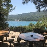 Снимок сделан в Yörük Parkı пользователем Gizem B. 8/17/2017