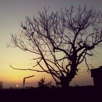 Photo taken at Dolon Kalan by Harpreet S. on 3/8/2013