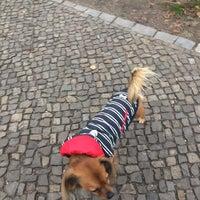 Photo taken at Helmholtzplatz by Fab A. on 11/18/2017