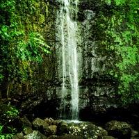 Photo taken at Mānoa Falls by Johnelle S. on 1/10/2013