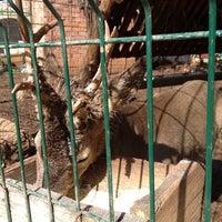 Photo taken at Eco-Selo Grabovica by Lakonoga on 5/11/2014