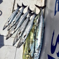 Photo taken at Marlin Deep Sea Fishing by Natali S. on 5/7/2017