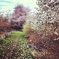 Foto tirada no(a) Arnold Arboretum por Mai N. em 4/20/2013