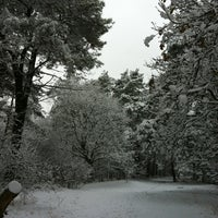 Photo taken at Schuttersbos by Harm on 12/7/2012