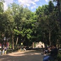 4/14/2018 tarihinde Delfi S.ziyaretçi tarafından Centro Histórico de Coyoacán'de çekilen fotoğraf
