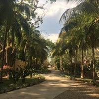 Photo taken at Yaxkin Spa at the Hacienda Chichen Resort by Amira on 4/14/2017