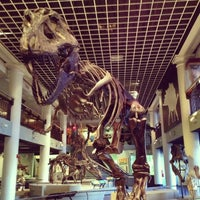 Photo taken at The Academy of Natural Sciences of Drexel University by Nina R. on 12/19/2012
