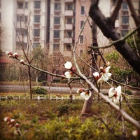 Photo taken at 苏宁总部 by yuzhe w. on 3/5/2014