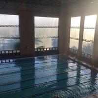 7/18/2017 tarihinde Öznur K.ziyaretçi tarafından NEU Swimming Pool'de çekilen fotoğraf