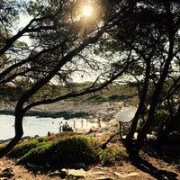 Photo taken at Jerolim Island by Senja V. on 8/16/2017