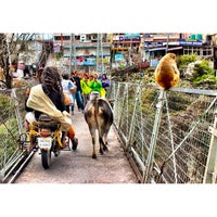 Photo taken at Lakshman Jhula | लक्ष्मण झूला by Ankit G. on 3/21/2015