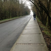 2/11/2013 tarihinde Münever✈ G.ziyaretçi tarafından İTÜ Ağaçlı Yol'de çekilen fotoğraf
