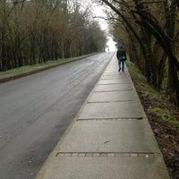 Foto scattata a İTÜ Ağaçlı Yol da Münever✈ G. il 2/11/2013