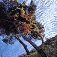Photo taken at Playa Las Conchitas by Thomas F. on 5/11/2013