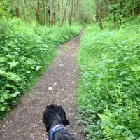 Photo taken at Bridgitte's Trail by Shannon V. on 5/24/2014