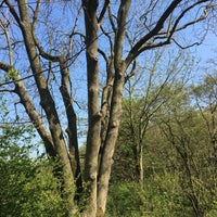 Photo taken at Oosthoekduinen by Vincent G. on 4/20/2017