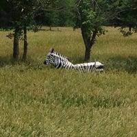 Photo taken at Backyard Zoo by John M. on 6/24/2013