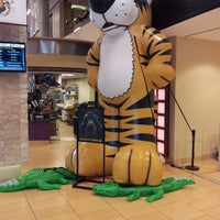 Photo taken at The Mizzou Store by Malcolm D. on 10/17/2013