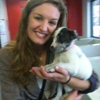 Photo taken at Atlanta Humane Society by Lauren T. on 12/15/2012
