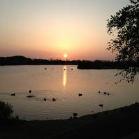 Photo taken at Scottsdale Pond by Dana S. on 3/22/2013