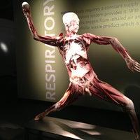 2/24/2013 tarihinde Todd M.ziyaretçi tarafından BODIES...The Exhibition'de çekilen fotoğraf