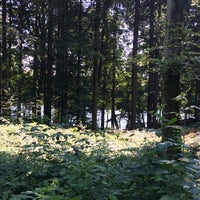Photo taken at Steinsee by Andrea on 7/24/2018