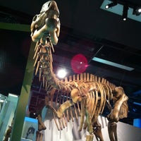 Photo taken at Melbourne Museum by Mey T. on 1/2/2013