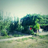 Photo taken at Bağ Evi by Kezban K. on 9/1/2013
