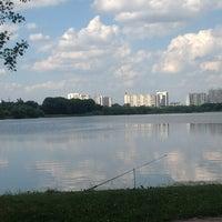 Das Foto wurde bei Парк «Борисовские пруды» von Ludmila T. am 6/15/2013 aufgenommen