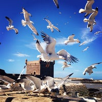 Photo taken at Port d'Essaouira by Yagnenok on 5/19/2013