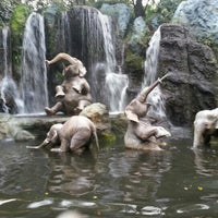 Photo prise au Jungle Cruise par Susan C. le12/12/2012