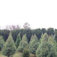photo taken at bluebird christmas tree farm by jophoto on 1242013 - Bluebird Christmas Tree Farm