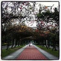 Photo taken at 榮星花園公園 by Portia L. on 4/9/2014