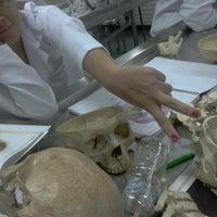 Photo taken at Laboratório de Anatomia by Neyla M. on 3/20/2013
