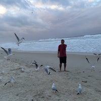 7/3/2013에 fahad a.님이 Cabarita Beach에서 찍은 사진