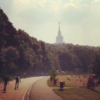 Снимок сделан в Природный заказник «Воробьёвы горы» пользователем Nikolay L. 6/29/2013