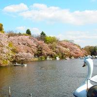 Foto scattata a Inokashira Park da Harumi K. il 4/4/2013