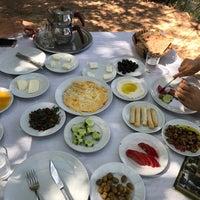 Photo taken at Çınar Tepe Kahvaltı Bahçesi by Sanem D. on 8/6/2017