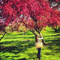 Photo prise au Queens Botanical Garden par PiRATEzTRY le5/30/2013