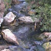 Photo prise au Los Peñasquitos Canyon Preserve par Amanda R. le3/9/2013