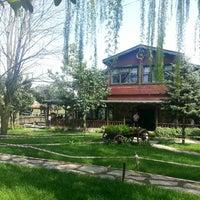 3/30/2013 tarihinde Can B.ziyaretçi tarafından Cansu Alabalık Tesisleri'de çekilen fotoğraf