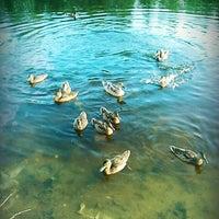 Снимок сделан в Набережная залива Параниха пользователем Anna G. 7/8/2013